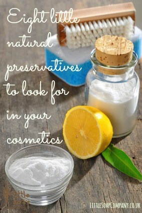 Eight little natural preservatives to look for in cosmetics ...